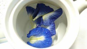 バタフライピーの花にお湯を注ぎ入れる